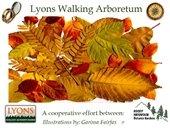Lyons Walking Arboretum