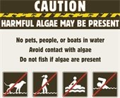 Caution with Algae