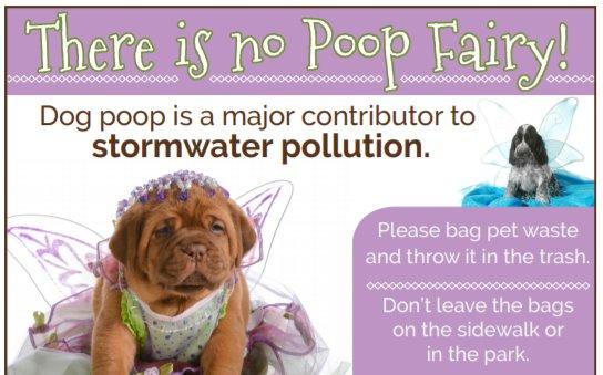 No Poop Fairy