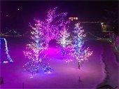 Lights at Sandstone Park