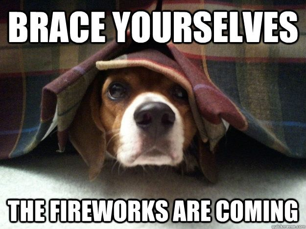 fireworks-dogs