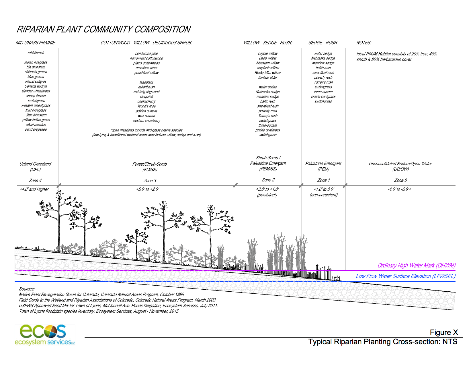 ecos_Typ Riparian Veg Cross-Section 11-18-15