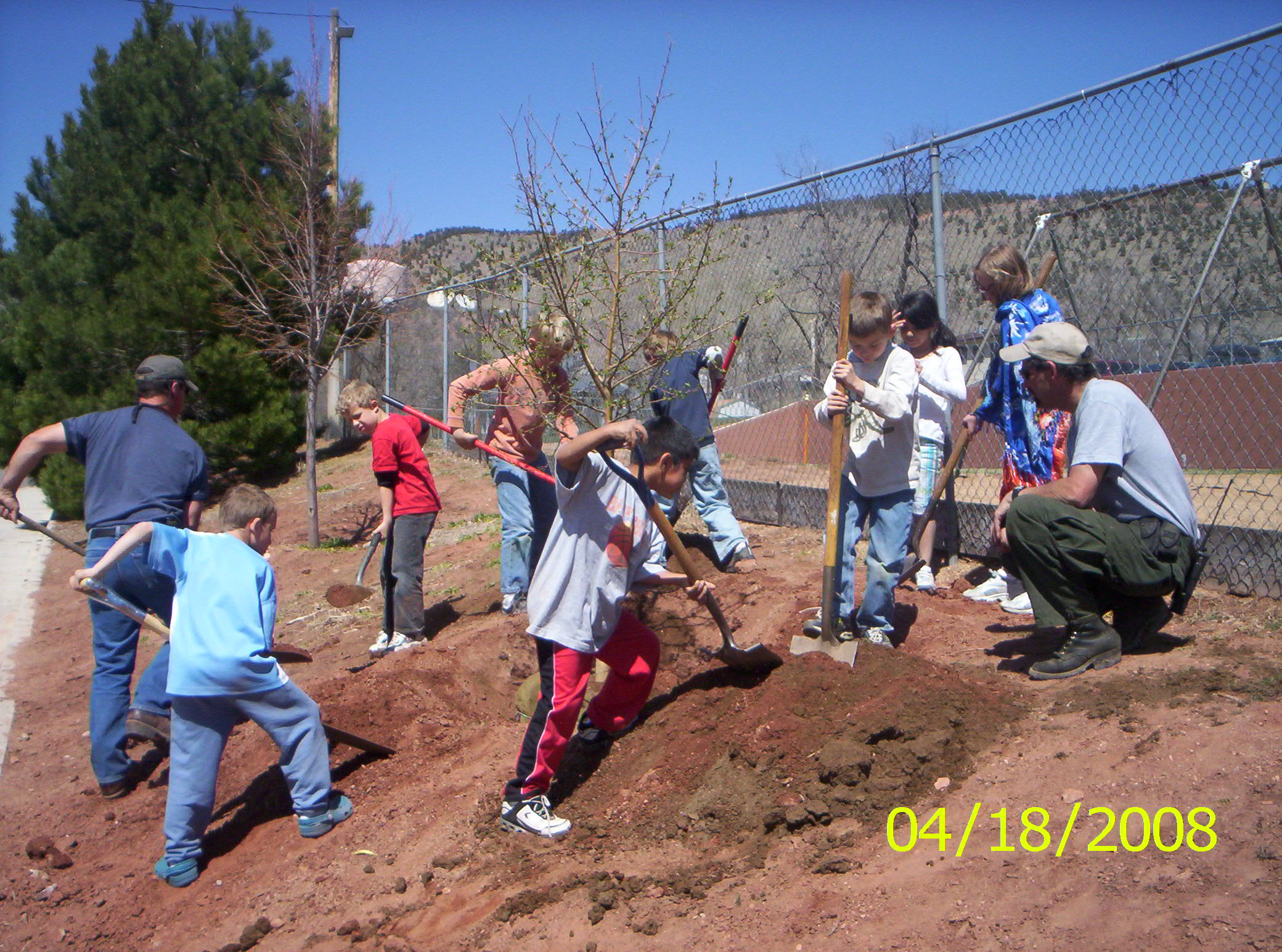 Arbor Day - Group of People Planting Trees